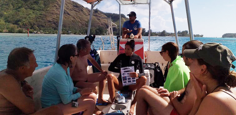 Moorea baleine guide / ©SERENASARASERESINI
