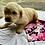 Thumbnail: Petra Pink Female