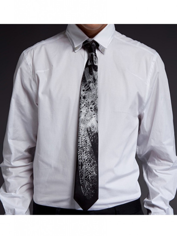 moth tie