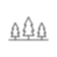 Moose_By Nature Website Icons-01.png