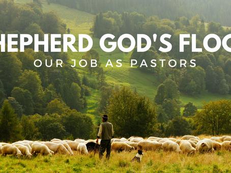 Shepherding Isn't Glamourous! -The Pastoral Role of Shepherding the Flock