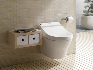 Product Showcase: Toilets
