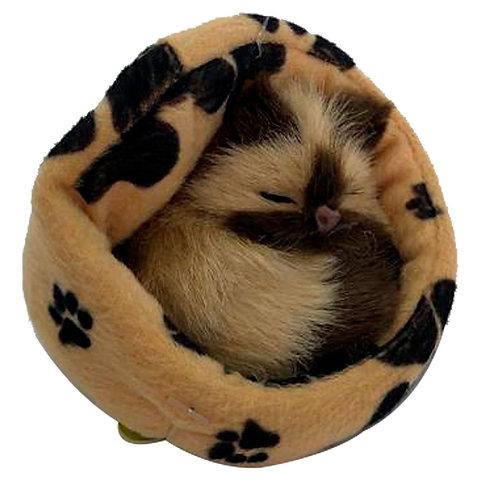 Peluche Gato Café Dormido