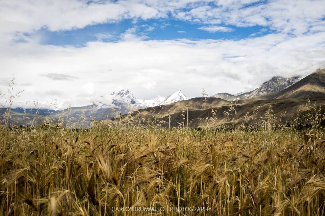 Shigatse, Tibet, 2015
