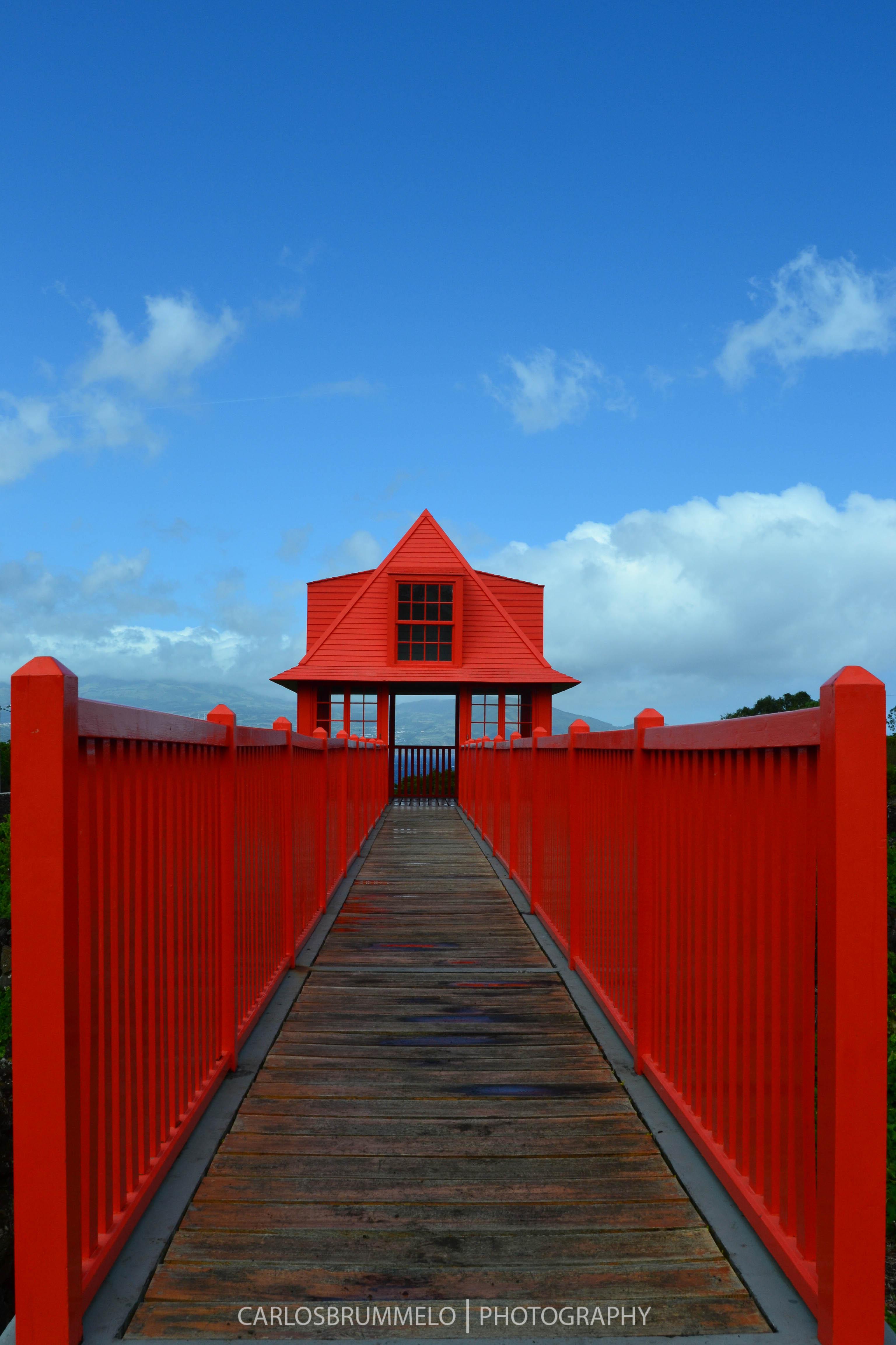 Pico, Azores, Portugal, 2012