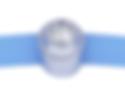 Colibrid Diamond Bracelet