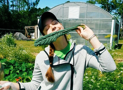 Pick Your Own Salad Event at the Ogier Gardens