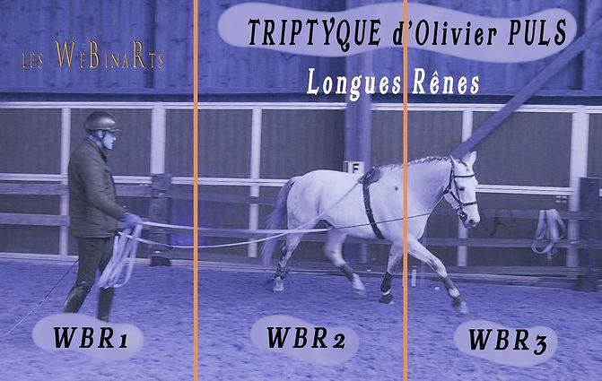Olivier TRIPTIQUE - image du film2.jpg