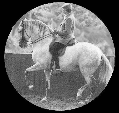 Ides MARCHAL à cheval détouré 2.jpg