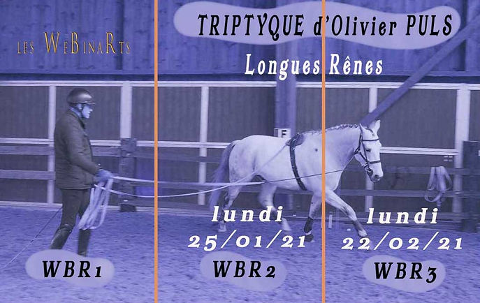 Olivier TRIPTIQUE - dates 2021.jpg
