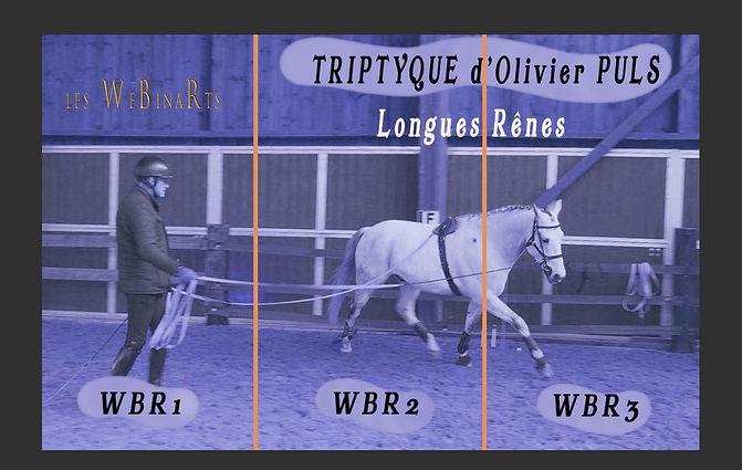 Olivier TRIPTIQUE petite WIX rs.jpg