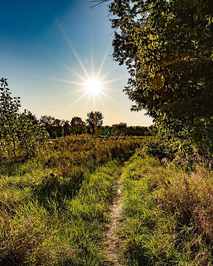 Intervale trails (12 of 68).jpg