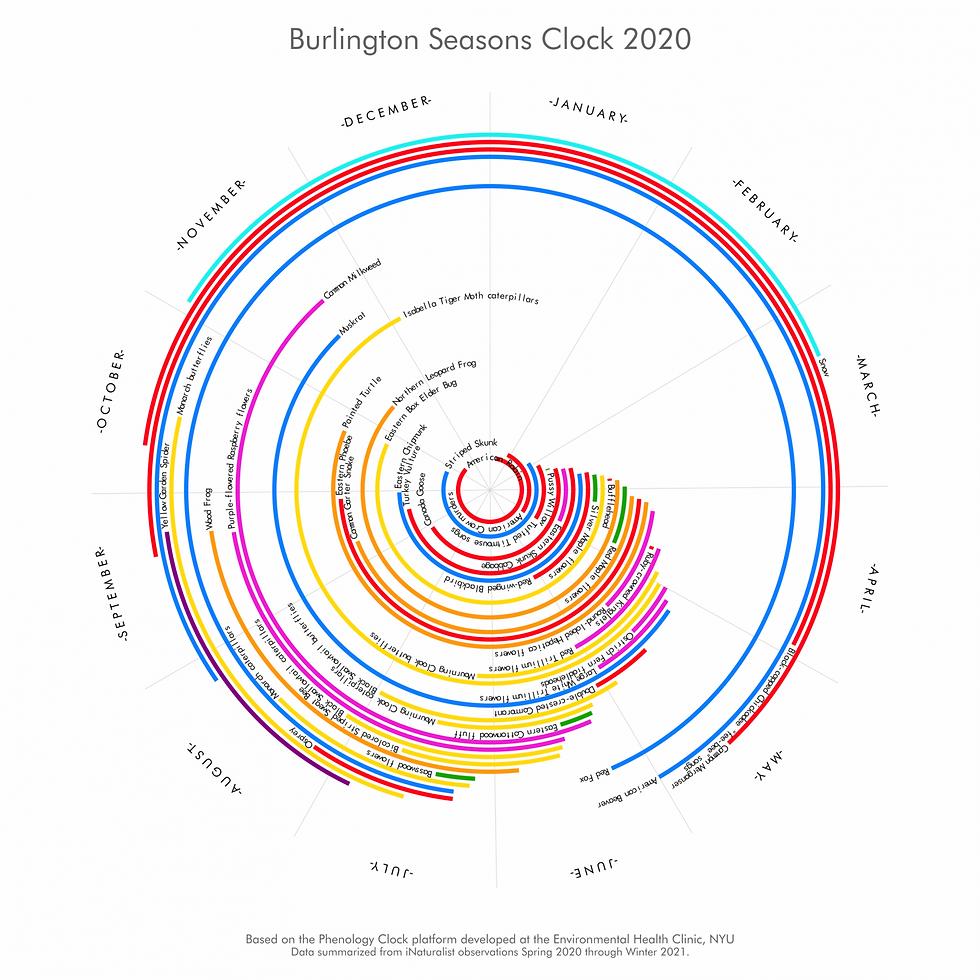 Burlington Seasons Clock 2020.png