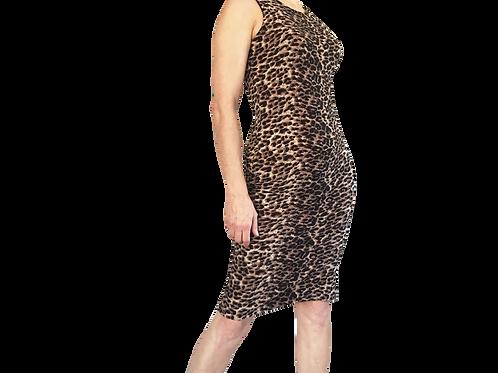 Cheetah muscle sheath with Slit
