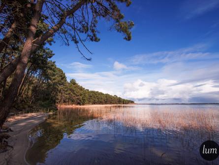 Rive de lac