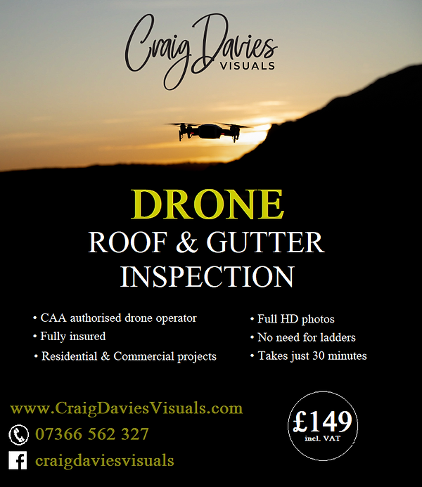 roof and gutter inspection flyer.png