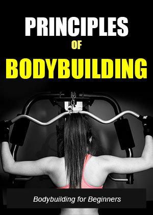Principles Of Bodybuilding