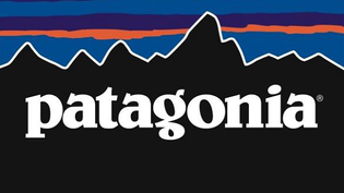 Patagonia Commercial for Merino Wool