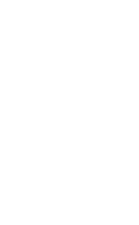 Franklin Dining Chair copy_2x.png