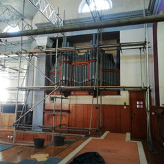 Uncovered Organ