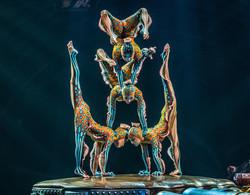 kurios-show-contortion