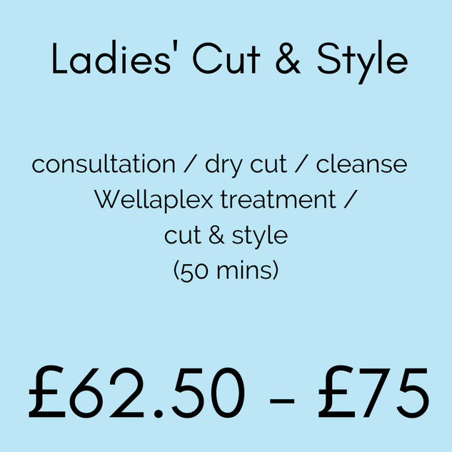 Ladies' Cut & Style