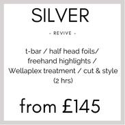 Silver Colour Revive