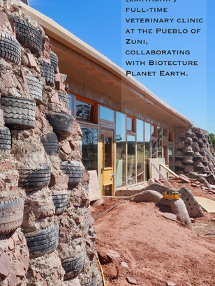 Zuni Veterinary Clinic's solar funded by Remy's Good Day Fund