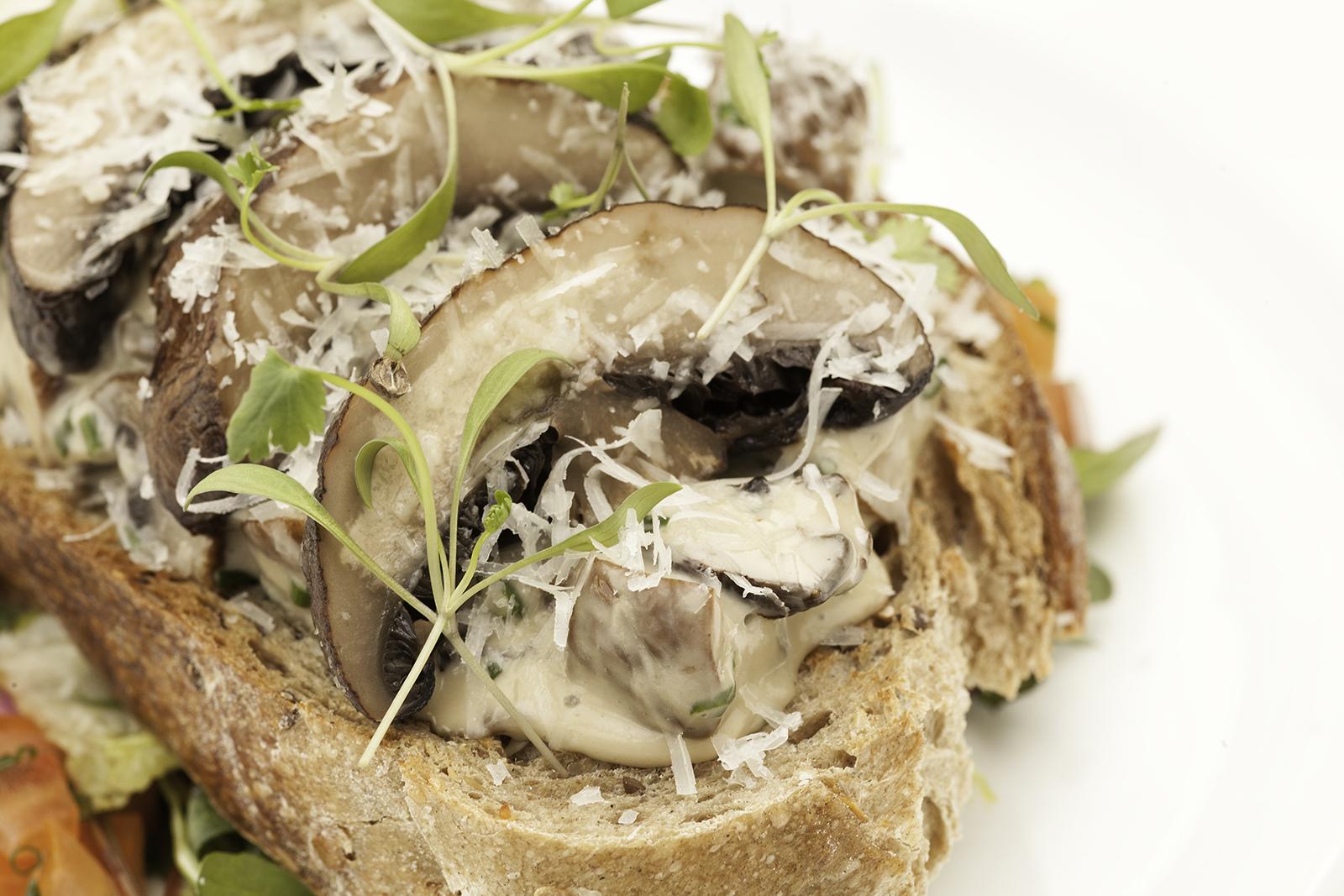Mushroom & tarragon Tartine