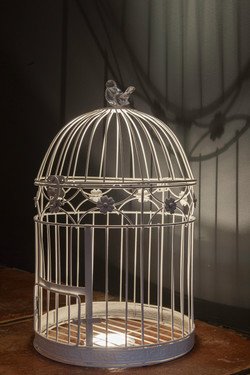 Cafe Tartine Birdcage