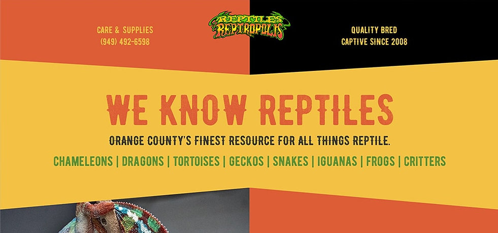 reptiles_reptropolis_website_banner-min.