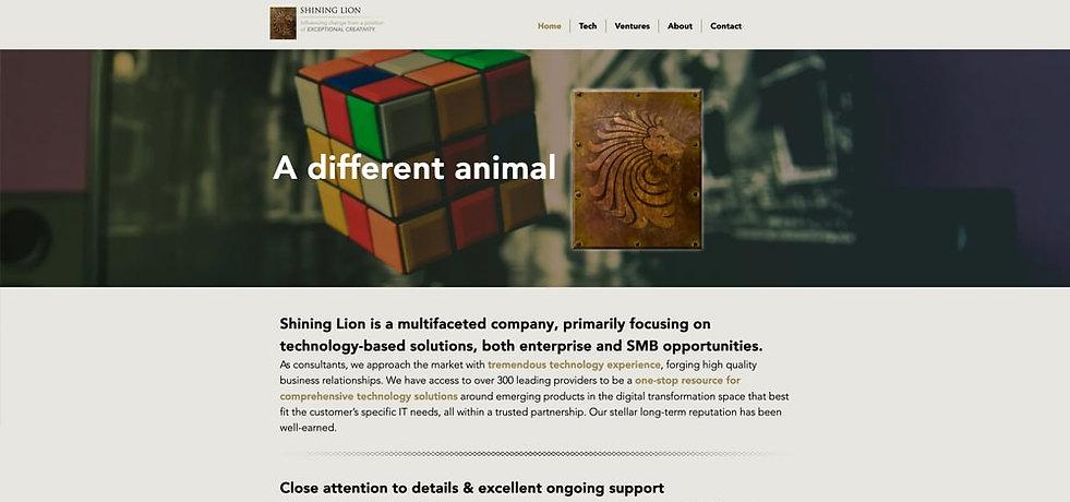 Shining Lion_website_banner-min.jpg