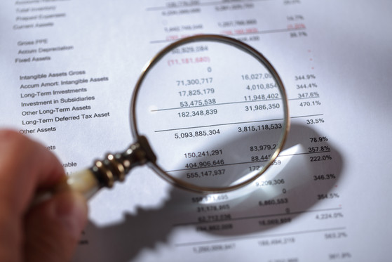 Are Audited Financial Statements Necessary?