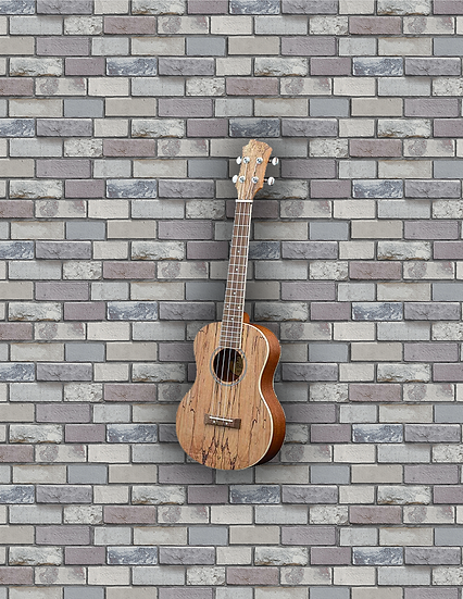Adam Black Exotic Wood Series Tenor Ukulele - Spalted Maple