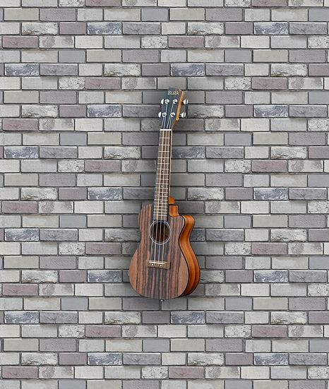 Adam Black Exotic Wood Series Concert CE Ukulele - Striped Ebony