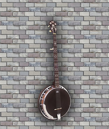 Barnes & Mullins Banjo 5 String. Rathbone Model