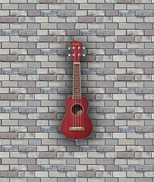 Adam Black ABUKSB120 Electro Acoustic Soprano Ukulele - Wine Red
