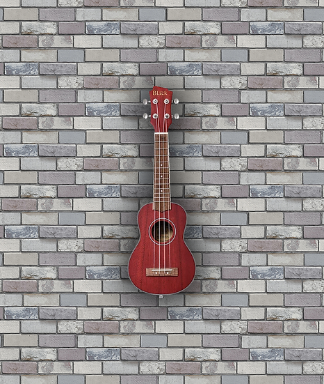 Adam Black ABUKSB120 Electro Acoustic Soprano Ukulele - Wine Red