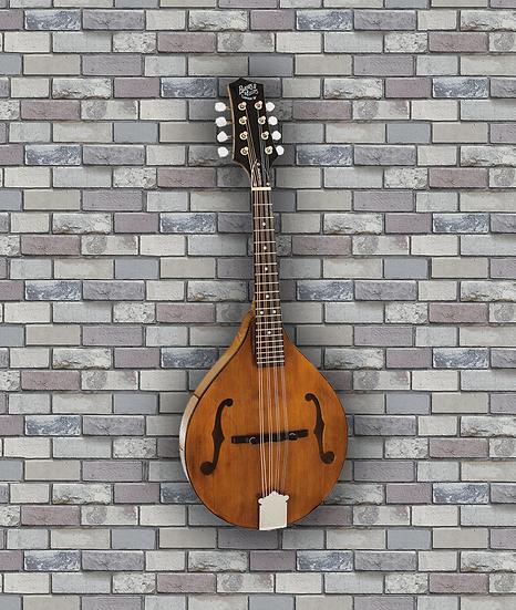 Barnes & Mullins Mandolin - Wimborne Model