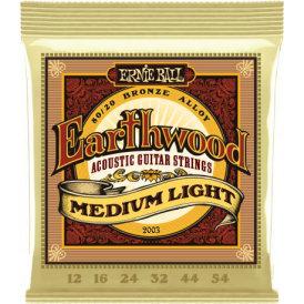 Ernie Ball Earthwood 80/20 12-54