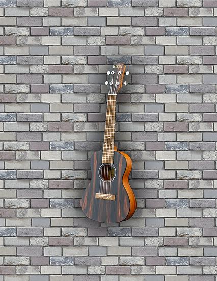 Adam Black Exotic Wood Series Concert Ukulele - Striped Ebony