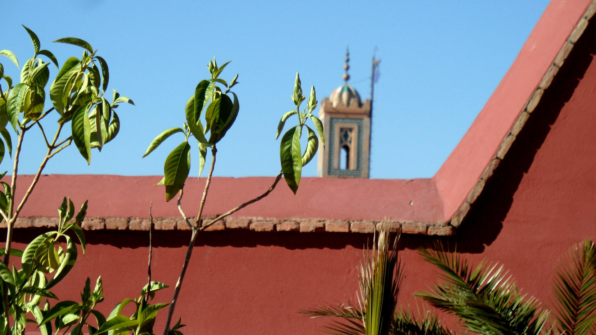 minaret.jpeg