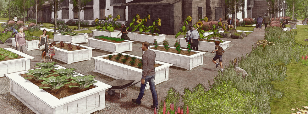 Senior Housing / Urban Farm