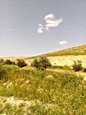 مزرعه للبيع شمال عمان منطقة العالوك مساحتها 10 دونمات مزروعه زيتون