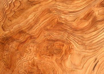 texture_tree_6.jpg