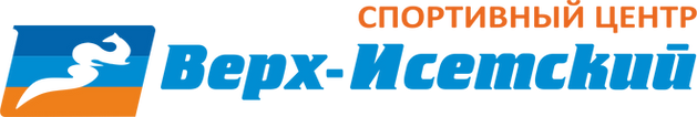 лого Верх-Исетский.png