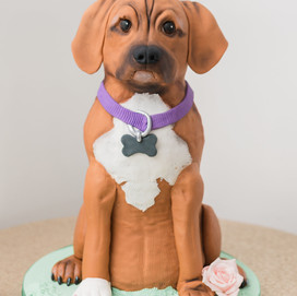 Lily the Grooms Cake