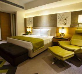 premier room.jpg