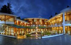 Treehouse Chail Villas.jpg