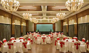 grand-ballroom-doubletree-by-hilton-goa-